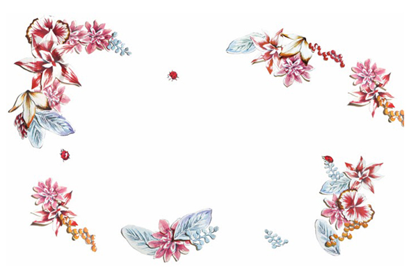 FRaU 2014年1月号 連載「細川モモ主宰 はじめての任活」VOL.2イラストレーション